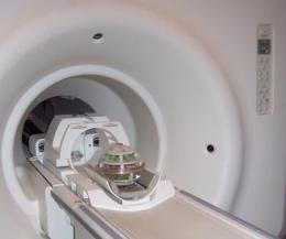 Meet Phannie, NIST's standard 'phantom' for calibrating MRI machines