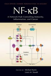 New book reviews research on key signaling molecule, NF-kB