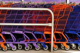 Researchers test green shopping scheme