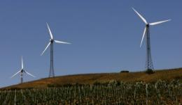Wind turbines are pictured in the village of Patirnico