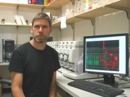 Researchers perform complete genomic sequencing of brain cancer cell line