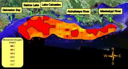 Scientists find changes to Gulf of Mexico dead zone