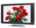 Sony Qualia TV