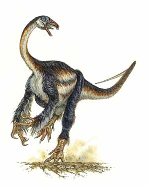 Bird-like feathered dinosaur Falcarius utahensis