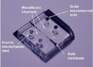 Researchers create first nanofluidic transistor