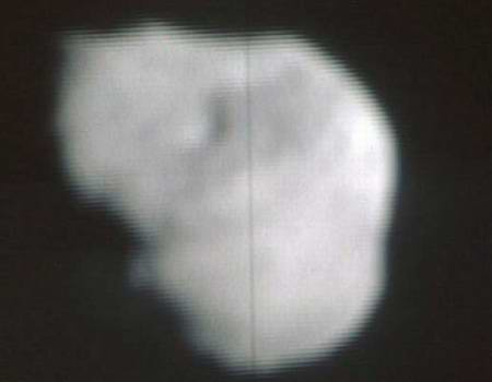 Nucleus of comet Tempel 1 before impact