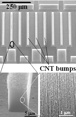 Figure 3: Carbon nanotube bumps