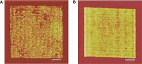 Superlens Nanowires