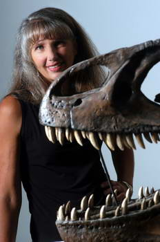 Eastern Montana's B. rex now yields female bone tissue
