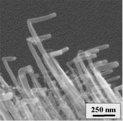 Strong alignment of nanotube growth with the direction of electric field lines