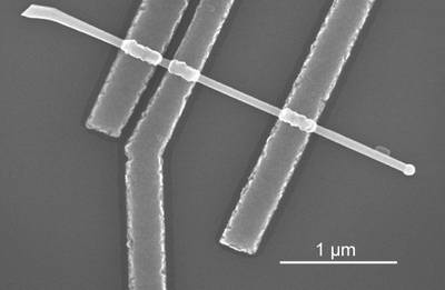 Scanning electron micrograph of one of the semiconductor nanowire devices