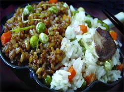 Rice genome
