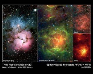 Spitzer Finds Stellar