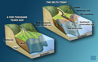 New study fuels Louisiana subsidence controversy