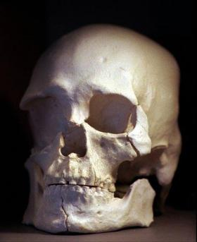 Bill would help study of ancient remains (AP)