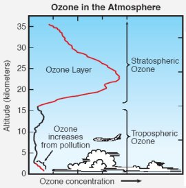 The ozone layer is located about 15+ km above Earth's surface.
