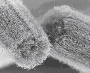 Carbon nanotubes  from Nano-Electronics (Mesoscopic Physics) at the University of Basel
