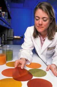 Edible food wrap kills deadly E. coli bacteria