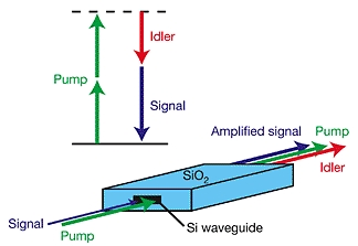 A Broadband Light Amplifier on a Photonic Chip