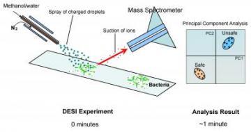 Illustration of DESI Technique