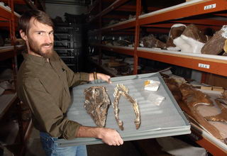 Fossils from ancient sea monster found in Montana