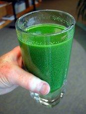 Water Filtration Technique Removes Dangerous Freshwater Algae Toxins