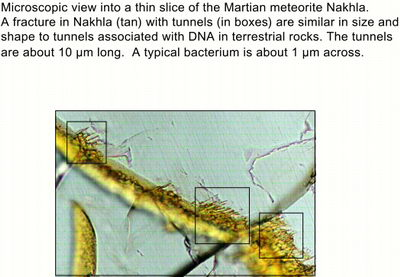 A microscopic view into a thin slice of the Martian meteor Nakhla