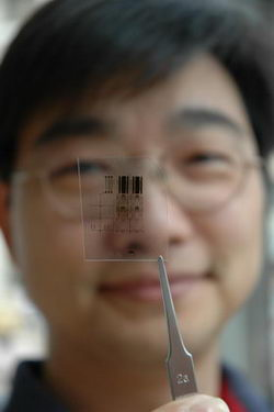 Research dishes out flexible computer chips