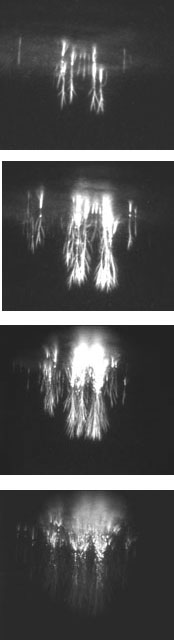 Images from video capturing sprites.