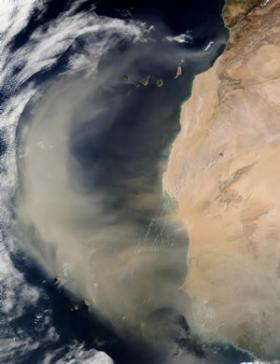 Study finds the air rich with bacteria