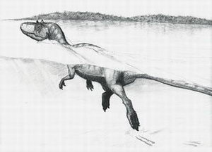 Definitive evidence found of a swimming dinosaur