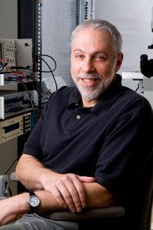 Biophysicists Describe New Gating Action of Acetylcholine Receptor