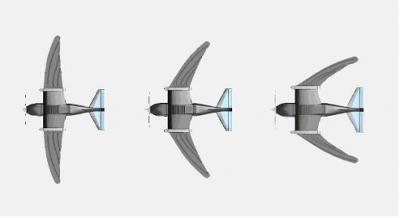 Bird sized airplane to fly like a swift