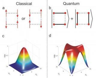 Diagnosing Entanglement Using Neutrons