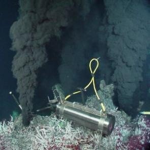 'Good vibrations' from deep-sea smokers may keep fish out of hot water
