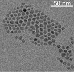 IMEC reports robust technology to functionalize nanoparticles for biomedical applications