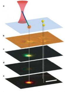 Nanowire Light Source