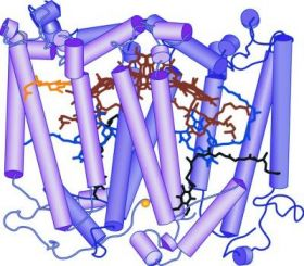 Photosynthesis Reaction Center Protein Structure