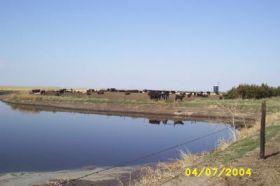Plum Creek Watershed