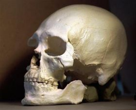 Power Struggle to Control Ancient Bones (AP)