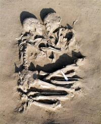 Prehistoric Rome Lovers Found in Embrace (AP)