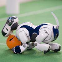 Robots from 33 Countries Clash at RoboCup 2007