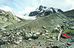 Western Canada's Glaciers Hit 7000-Year Low