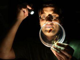Buczkowski with Roaches