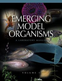 Emerging Model Organisms