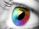 Molecular mechanisms of vision