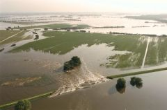 Flood 2002