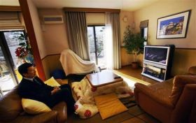 Fuel Cells Make Power for Homes in Japan (AP)