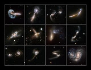 Galaxies Gone Wild