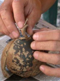 Greek pot early 5th c. BCE
